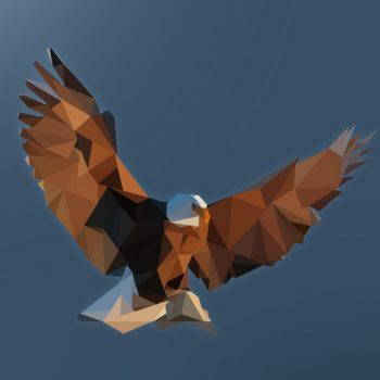 Polygon Eagle